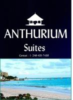 Anthurium Suites