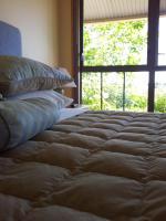 Hawkdun Rise Vineyard & Accommodation - Central Otago, South Island, New Zealand