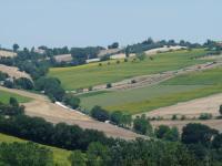 Colline Di Bartolo, Holiday homes - Corinaldo