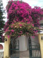 Artemidos Apartment, Apartmány - Agia Marina Aegina