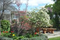 Alexandra Garden Court Motel - Central Otago, South Island, New Zealand