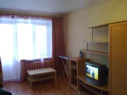 Apartment Nekrasova 14