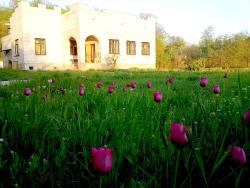 Country house Zolotaya Usadba