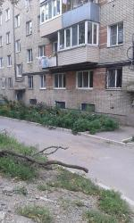 Apartment on Cheremukhovaya 12a