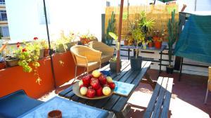 Matt Hostel Terrace