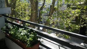 Apartamento 3 Dormitorios en parque Rodó, Appartamenti  Montevideo - big - 18