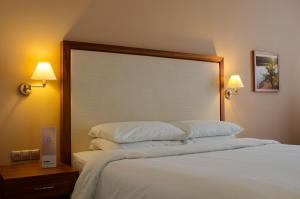 Khortitsa Palace Hotel, Отели  Запорожье - big - 9