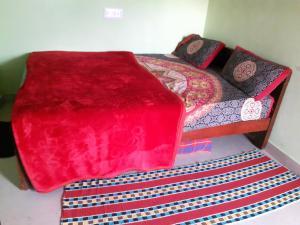 Namma Chikmagaluru NC-GVH, Проживание в семье  Attigundi - big - 24