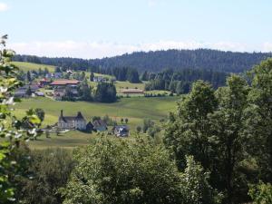 Haus Tannenhof, Penzióny  Ibach - big - 24