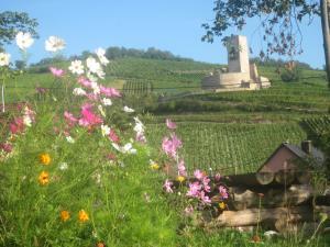 Eco-Logis du Vignoble