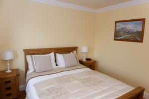 Tower View B&B, Bed and Breakfasts  Dingle - big - 24