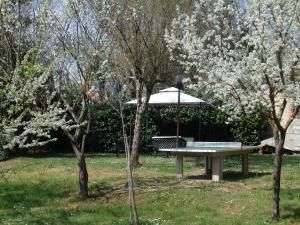 Villa la Chiocciola