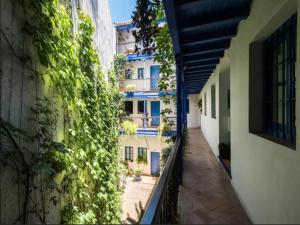 Tesoro De Sevilla, Appartamenti  Siviglia - big - 12