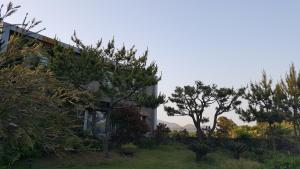 Jejurak, Holiday homes  Seogwipo - big - 38