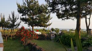 Jejurak, Holiday homes  Seogwipo - big - 37