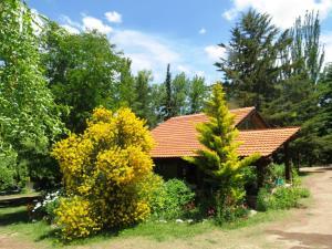 Cabanas Sumampa, Nyaralók  Cacheuta - big - 7