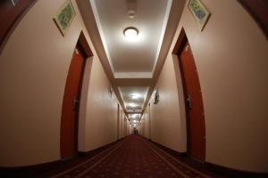 Отель Турист - фото 13