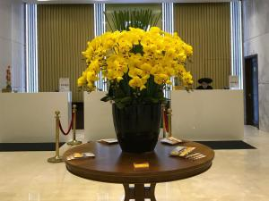 Adamo Hotel, Отели  Дананг - big - 93