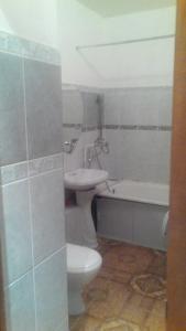 большая однокомнатная квартира, Апартаменты  Казань - big - 1