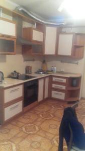 большая однокомнатная квартира, Апартаменты  Казань - big - 2