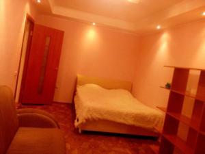 большая однокомнатная квартира, Апартаменты  Казань - big - 3