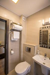 Boson Rent Apartament Sibiu, Apartmány  Sibiu - big - 2