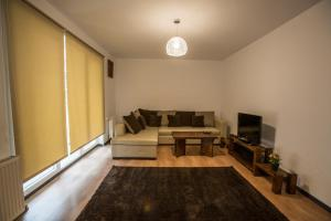 Boson Rent Apartament Sibiu, Apartmány  Sibiu - big - 8