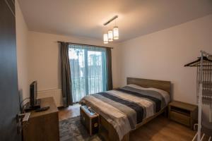 Boson Rent Apartament Sibiu, Apartmány  Sibiu - big - 5