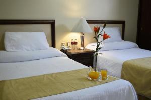 Агуаскальентес - Hotel Posada La Fuente