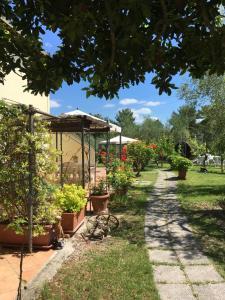 Agriturismo Podere Sottogello, Bauernhöfe  San Giovanni a Corazzano  - big - 17