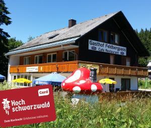 obrázek - Hotel Restaurant Feldbergpass