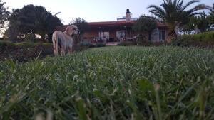 Özbek Çiftlik Evi - Guest House