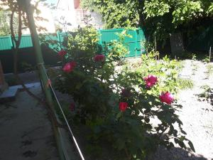 Guest House on Partizanskaya, Affittacamere  Divnomorskoye - big - 43