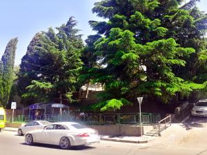 Liza's Guest House, Penziony  Tbilisi City - big - 57