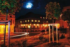 Hotel Zelený Strom