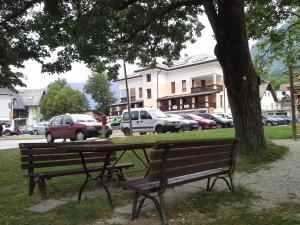 obrázek - Apartments Vila Bovec