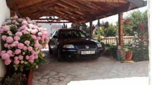 Villa Cvijeca - фото 15