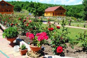 Rózsapark Vendégház