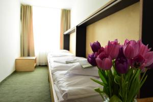 Hotel Diery