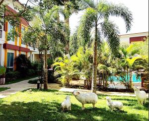 The One Cozy Vacation Residence, Hotels  Chalong  - big - 28