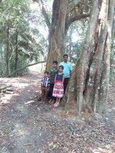 Wayanad Homestay, Homestays  Mananthavady - big - 7
