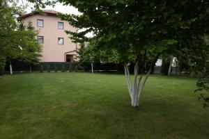 Forum Apartments - фото 8