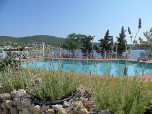 Oneiro glico, Aparthotely  Agia Marina Aegina - big - 4