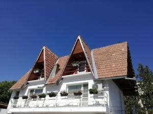 Casa Rodica