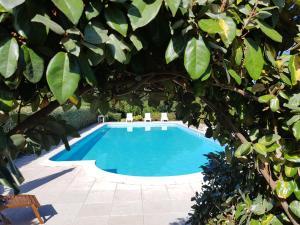 Villa Oliva verde, Villen  Costa Paradiso - big - 1