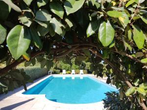 Villa Oliva verde, Villen  Costa Paradiso - big - 72