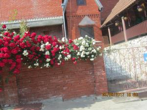 Guesthouse Solnechniy Agoy