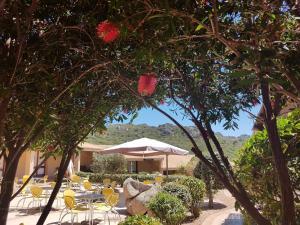 Villa Oliva verde, Villen  Costa Paradiso - big - 117