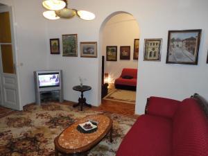 Sarajevo Spacious Apartment