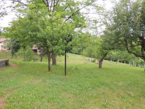 Green Eden, Bed and Breakfasts  Gornji Zvečaj - big - 66